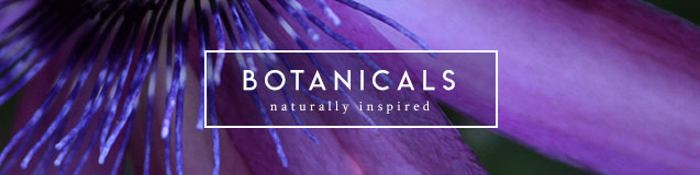 Botanicals Mattresses - naturally inspired