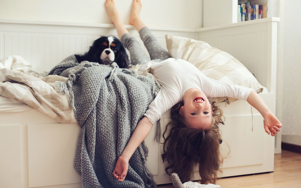Child having fun with dog on small single bed