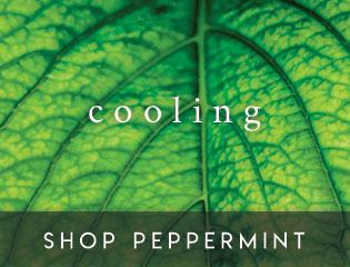 Image link to Botanicals Peppermint 1000 Pocket Mattress