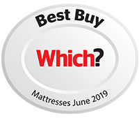 Which Best Buy 2018 Logo