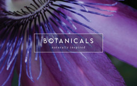 Botanicals Passiflora 1000 Pocket Mattress Label