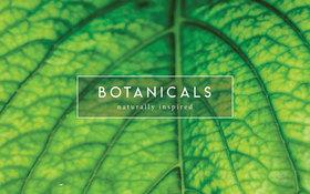 Botanicals Peppermint 1000 Pocket Mattress Label