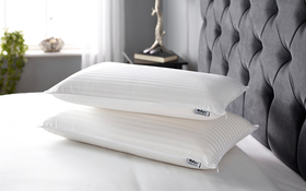 Relyon Superior Comfort Deep Latex Pillow Room