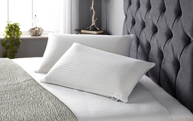 Relyon Superior Comfort Slim Latex Pillow Room