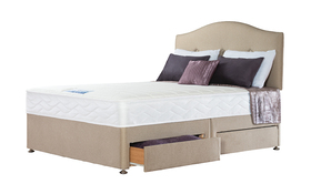 Sealy Mulberry Divan