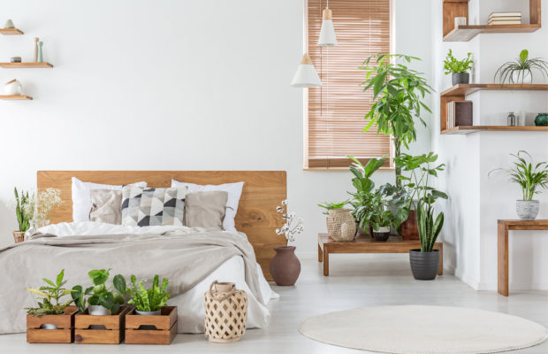 9 Ways to Beat Bedroom Toxins on a Budget