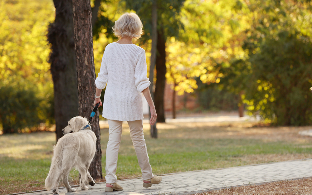 Senior woman walking her dog in a park